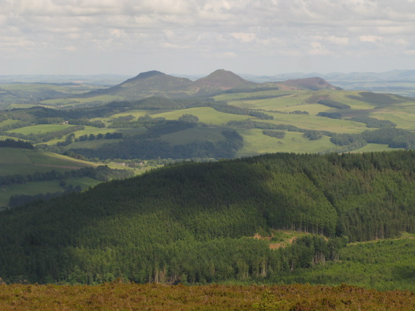 View of the Eildon Hills